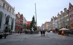 BOŻE NARODZENIE 2015# Gdańsk Długi Targ, Neptun, Dwór Artusa i Choinka 2015# Choinka 2015 na Długim Targu w Gdańsku# Świąteczna choinka została przywieziona do Gdańska i stanęła na Długim Targu