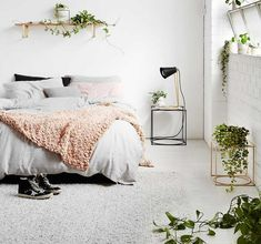 Wohnen mit Zimmerpflanzen - Pflanzgefäße zum Hängen und Stellen von Ivy Muse