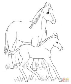 Horse And Foal Coloring Page From Horses Category Select 27569 Printable Crafts Of Cartoons
