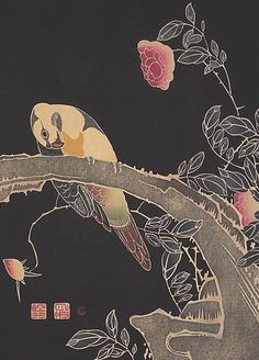 Ukiyo-e woodblock print of a parrot standing on a flowering rose bush, circa 1900, Japan. Artist Itô Jakuchû