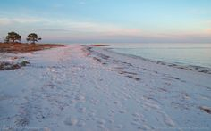 On the Forgotten Coast of Florida, you'll find unusual seascapes of bright white, quartz sand beaches along marshy bayous, with pine trees growing right next to the sea. At sunset, the colors reflected by the sand, clouds and water often have an opalescent shimmer.