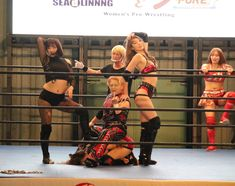 Divas, Wrestling, Sports, Lucha Libre, Hs Sports, Sport