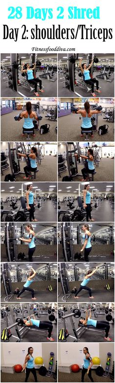 DAY 2: SHOULDER/TRICEPS 28 DAYS 2 SHRED.