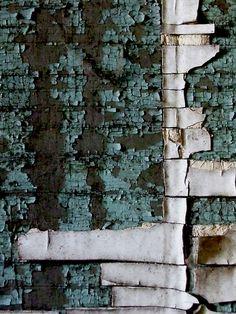 laura j wryan, Paint-scape