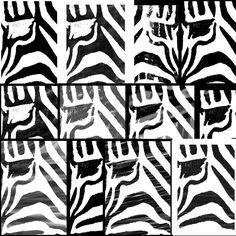 Zebra | black & white
