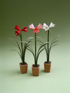 Amaryllis Paper Flower kit for 1/12th by TheMiniatureGarden