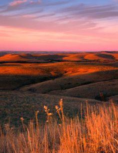Dusk over Konza Prairie, Kansas by James Nedresky photographer, Travel Honeymoon Backpack Backpacking Vacation Flint Hills, Grandeur Nature, City Landscape, Beautiful World, Painting Inspiration, Dusk, Mother Nature, Landscape Photography, Beautiful Pictures
