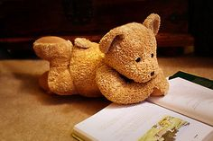 Teddy reading, this is too cute ❤️ Teddy Bear Images, Teddy Bear Pictures, My Teddy Bear, Cute Teddy Bears, Teddy Hermann, Whatsapp Wallpaper, Storybook Cottage, Bear Wallpaper, Kawaii