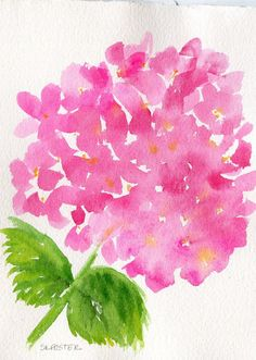 Pink Hydrangeas watercolor painting original 5 by SharonFosterArt, $22.00