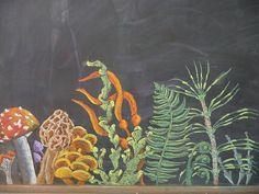chalkboard drawing inspiration