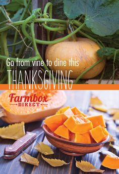 Make your organic Thanksgiving feast completely hassle free & healthy this year! Farmbox Direct will deliver all produce necessities along with the turkey to your door! All delicious, all USDA Certified Organic! Free shipping. Limited supply, order your box today! www.farmboxdirect.com