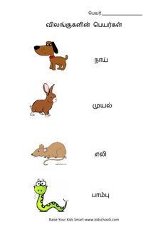 tamil word to readwith pics for ukg - Google Search Preschool Learning, Teaching, Lkg Worksheets, Tamil Language, Behaviour Management, Activities For Kids, Work Sheet, Birthdays, Classroom