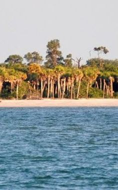 Cayo Costa State Park | Travel | Vacation Ideas | Road Trip | Places to Visit | Boca Grande | FL | Fishing Spot | Campground | Nature Reserve