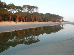 Hunting Island State Park, Beaufort, South Carolina  #14 of trip advisor's top 25 beaches in US 2013    Camping  East Coast Vacation  possibility?