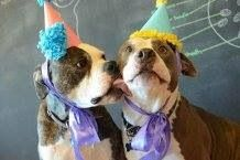 a pitty party.. awesomeness!