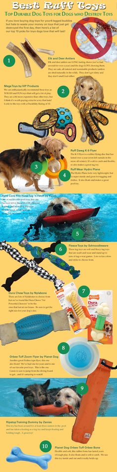 Top Ten Durable Dog Toys (Infographic) | Ruff Toy Reviews -  We need this information at our house - Midas is a toy destroyer!