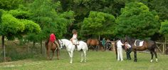 Horse riding trips in Italy's green heart
