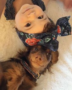 And these precious little faces: | Literally Just A Bunch Of Babies With Dogs To Make You Smile