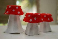 champignon boite oeufs