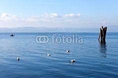 Blue Calm Waters - Bracciano Lake © Shopartgallery.com  $1