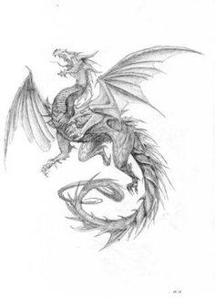 драконы тату - Поиск в Google