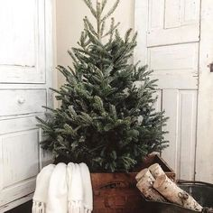 christmas tree scandinavian So would it be weird to do this same setup in my room again this year It was kind of my favorite homedepot Im gonna need you to have
