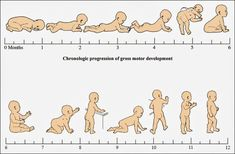 Motor Milestones: Part One Dinosaur Physical Therapy Simple activities for parents to help their infant with motor development Pediatric Occupational Therapy, Pediatric Ot, Baby Massage, Physical Development, Child Development, 6 Month Development Milestones, Baby Development Chart, Language Development, Gross Motor Skills
