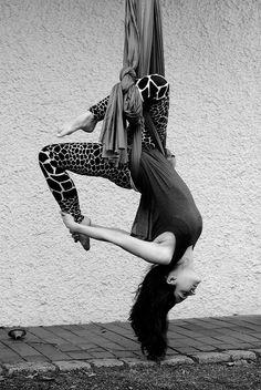 Aerial Yoga Photo C Hannah S Pilz