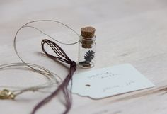 tiny black alder cone in the bottle, nature necklace