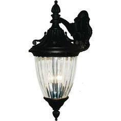 Z-Lite Waterloo Collection Black Finish Outdoor Wall Light