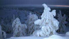 Vaara-Suomi sijaitsee Itä-Suomessa. Snow, Outdoor, Outdoors, Outdoor Games, The Great Outdoors, Eyes, Let It Snow