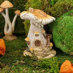 Yellow Mushroom Fairy House - Fairy Garden House Note: Listing is for the mushroom house. Other items pictured are not included. Yellow Mushroom, Mushroom House, Mushroom Art, Clay Fairy House, Fairy Garden Houses, Fairy Garden Supplies, Gardening Supplies, Clay Fairies, Fairy Furniture