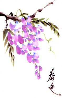 Wisteria's Color by Cindy Pon - Chinese Brush Art