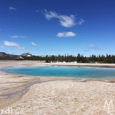 Turquoise Pool, Midway Geyser Basin warms up a perfect Spring day in Yellowstone National Park.