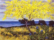 Image result for franco azzinari Lavender Fields, Wild Flowers, Poppies, Grass, Italy, Plants, Art, Art Background, Italia