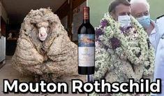Mouton Rothschild, Wine, Drinks, Bottle, Drinking, Beverages, Flask, Drink, Jars