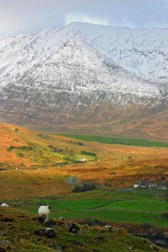 Connemara Winter - Ireland