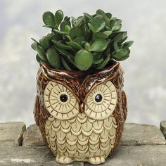 Owl Planter gift for flower lovers