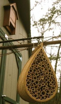 This mason bee house is becoming a popular item for gardeners trying to produce a healthy food supply. A bat house hangs from the shed in the background.