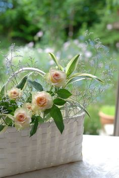 ❢basket of roses Peach And Green, Rose Cottage, Spring Has Sprung, Morning Greeting, Cut Flowers, Amazing Flowers, Rose Petals, Floral Arrangements, Pretty
