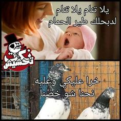 Arabic Memes, Arabic Funny, Funny Arabic Quotes, Funny Love Jokes, Really Funny Memes, Haha Funny, Laughing Pictures, Boku No Hero Academia Funny, Funny Quotes For Instagram