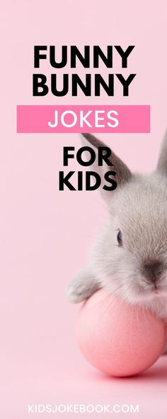 These bunny themed Easter jokes for kids are always a hit! Some call them funny and other kids call them hilarious! Even the adults will be chuckling! Free Printable lunch box jokes too! Easter Bunny Jokes, Funny Bunnies, Funny Parenting, Parenting Hacks, Bunny Crafts, Easter Crafts, Rabbit Jokes, Jokes And Riddles, Jokes For Kids