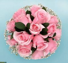 The perfect Fleur Animated GIF for your conversation. Discover and Share the best GIFs on Tenor. Welcome Pictures, Love Pictures, Beautiful Pictures, Beautiful Gif, Beautiful Roses, Gifs, Wedding Bouquets, Wedding Flowers, Pink Bouquet