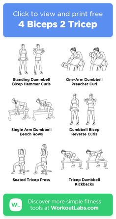 Biceps Workout At Home, Bicep And Tricep Workout, Dumbbell Workout, Easy Workouts, At Home Workouts, Reverse Curls, Forearm Stand, Preacher Curls, Hammer Curls