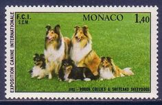 Rough Collie Shetland Sheepdog Dogs Monaco MNH stamp