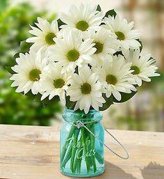 Daisies in a jar, daisy bouquet