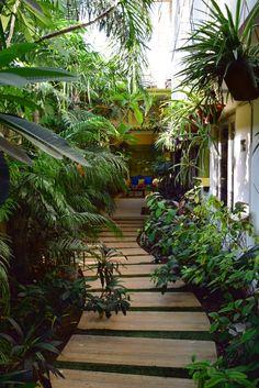 Garden with Wooden path walkway Rustic Gardens, Unique Gardens, Beautiful Gardens, Small Gardens, Beautiful Landscapes, Wooden Path, Wooden Walkways, Path Design, Landscape Design
