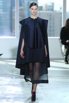 Delpozo RTW Fall 2014 - Slideshow - Runway, Fashion Week, Fashion Shows, Reviews and Fashion Images - WWD.com