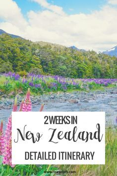 New Zealand: a country I've wanted to visit for a long time! I only had two weeks at the end of December to work with, which is the time usually recommendedto visit just one of the two main …