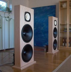 Quasar MkII with BD-Design BD15's and Fostex FE206En